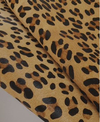 Leopard Hair on Hide Medium...