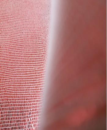 Red Guana